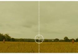 Wes Anderson und die goldene Mitte